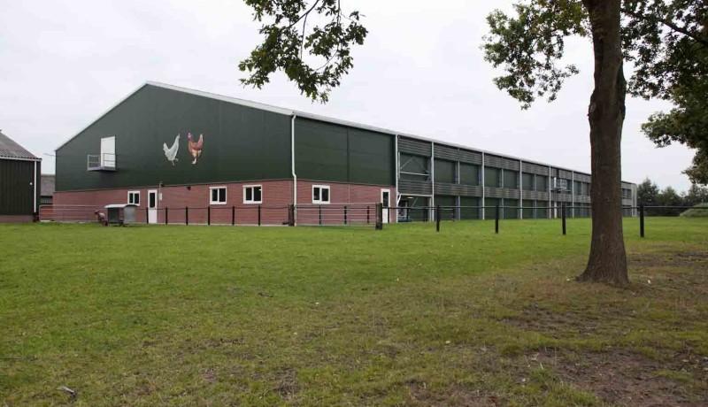 Exel Stallenbouw: pluimveestallen