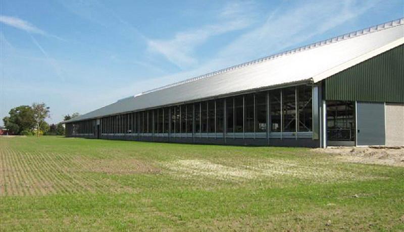 Stallenbouw Exel Schie ligboxenstal koeienstal