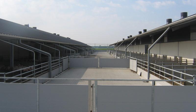 Exel stallenbouw: vrije uitloopstal buitenzijde