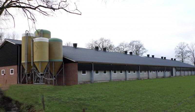 oerderij varkensstal Bouwimpex Hardeman van Harten zeugenstal Twente Overijssel Achterhoek Gelderland Drente