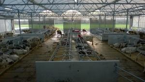 Exel Lemele Bouw agrarisch